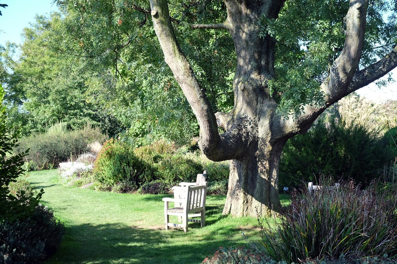 Le havre des jardins suspendus d ambulations et photos for Entretien de jardin le havre